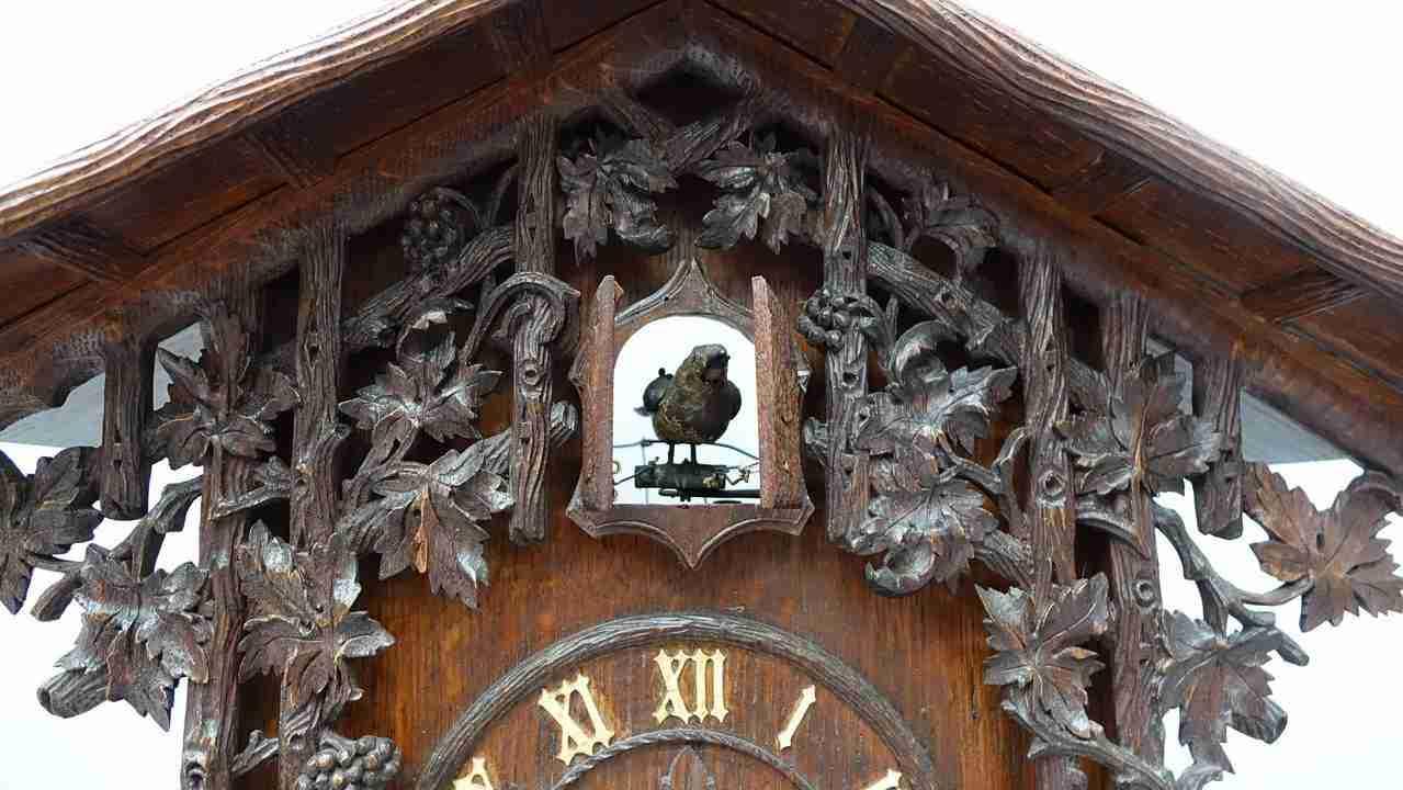 orologio foresta 18