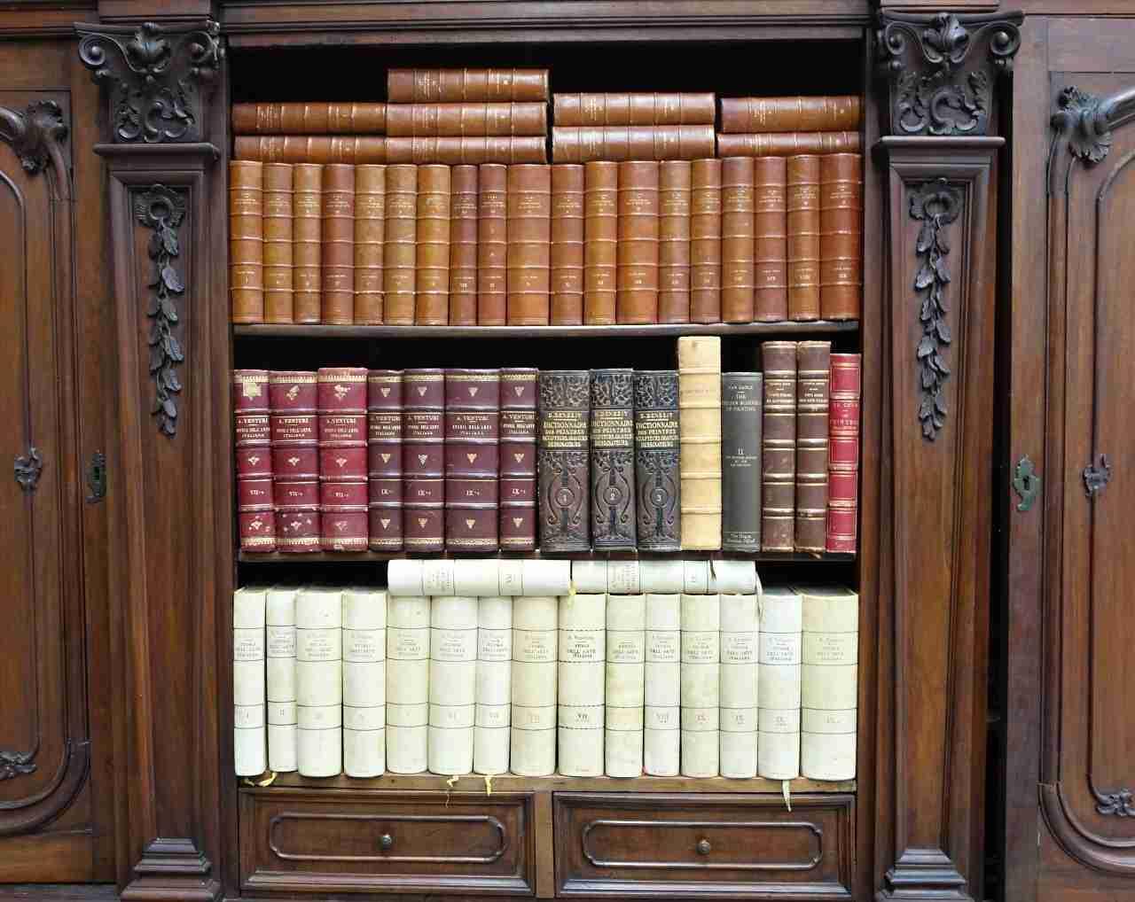 libreria-libri-venturi-e-zani