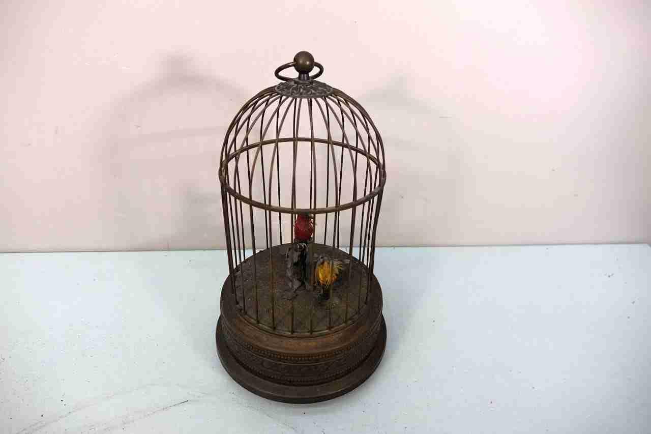 gabbia-uccelli-12