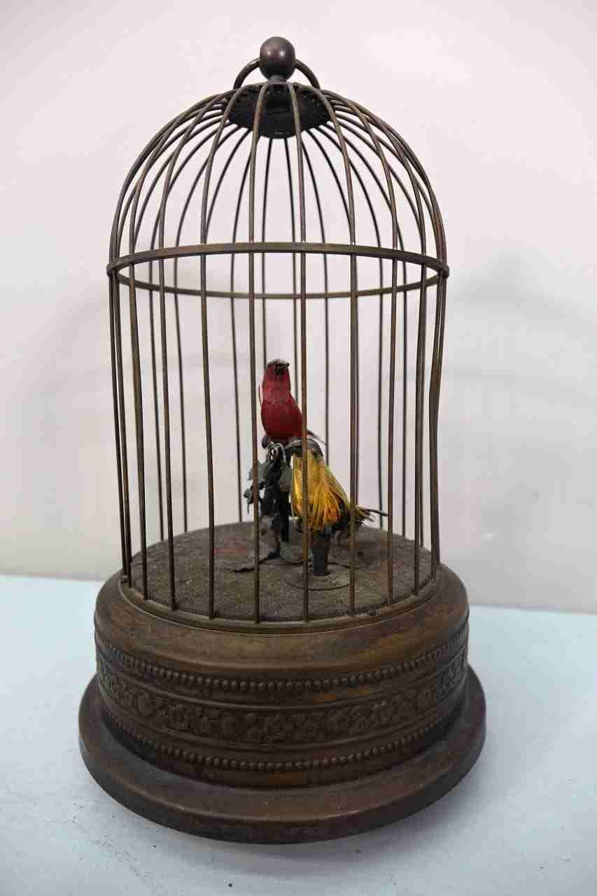 gabbia-uccelli-13