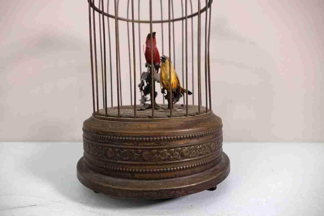 gabbia-uccelli-14
