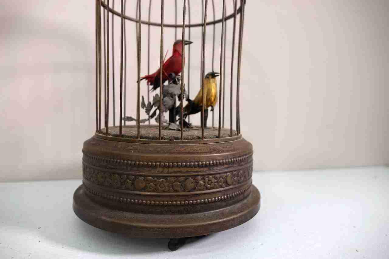 gabbia-uccelli-16