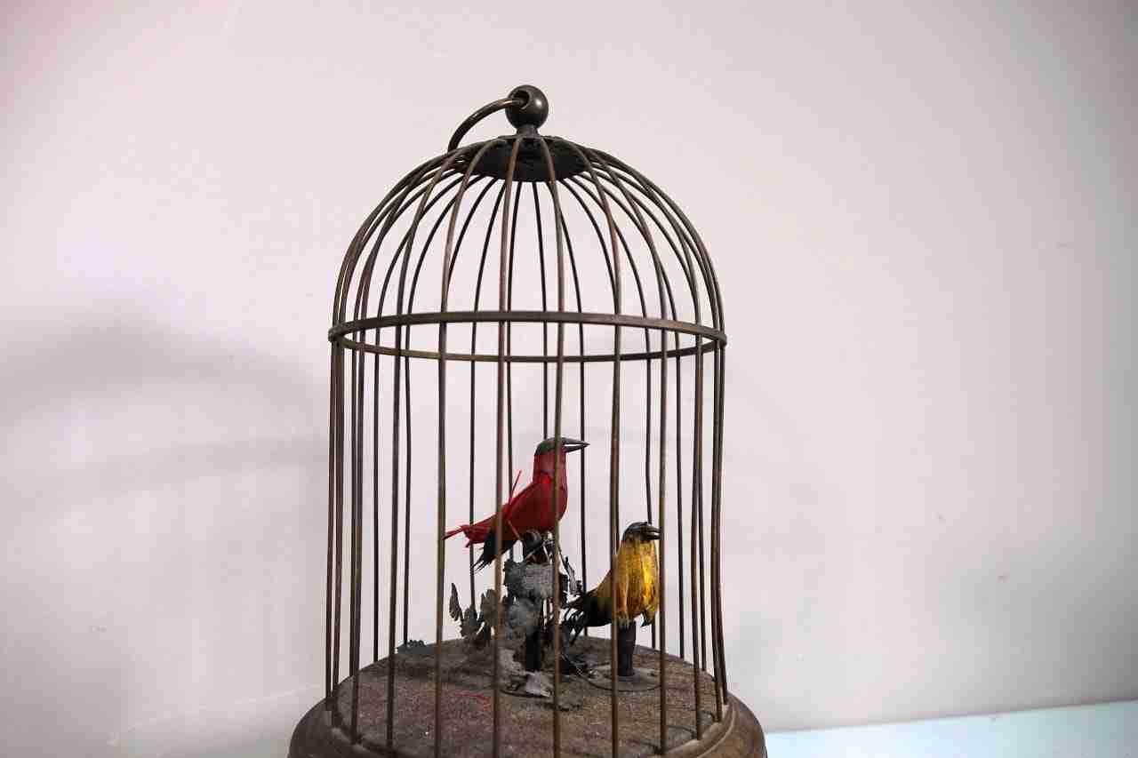 gabbia-uccelli-17