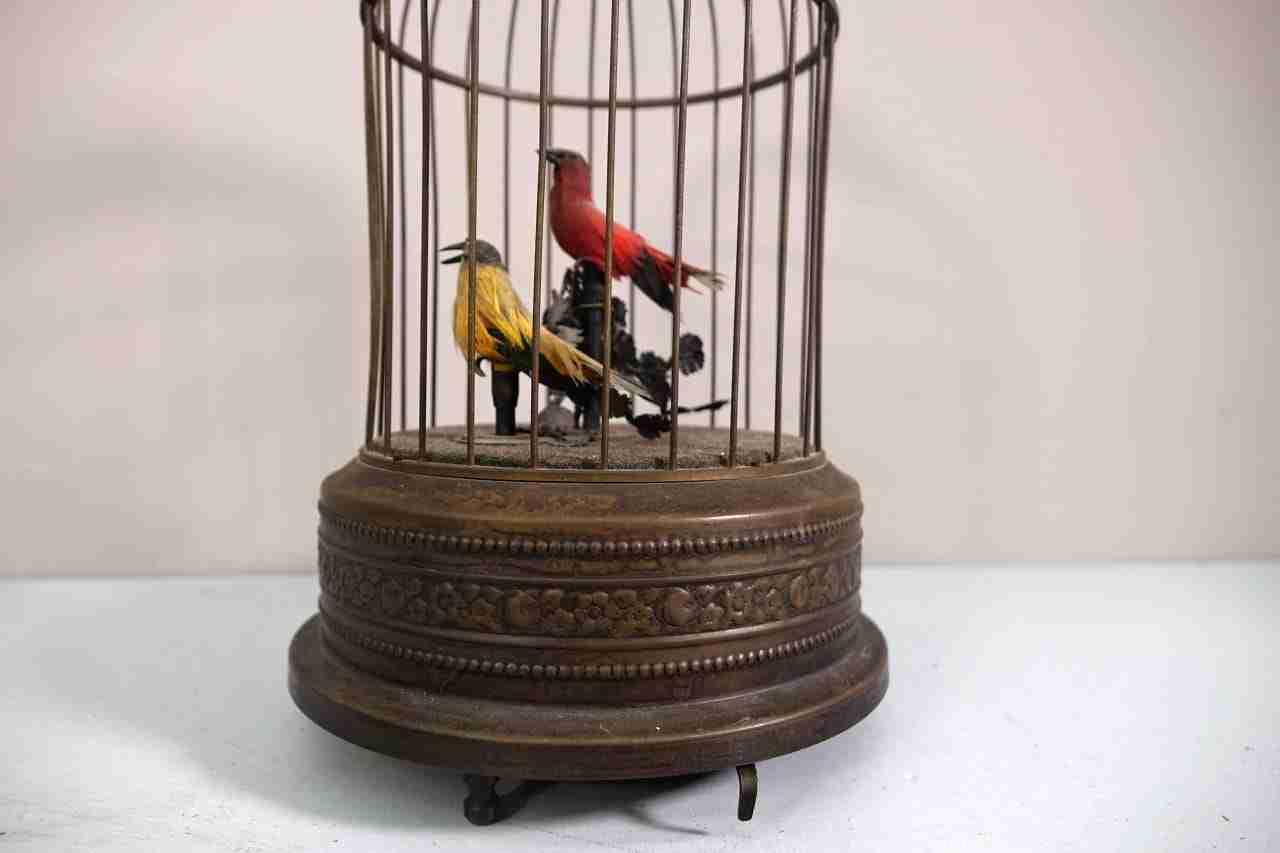 gabbia-uccelli-18
