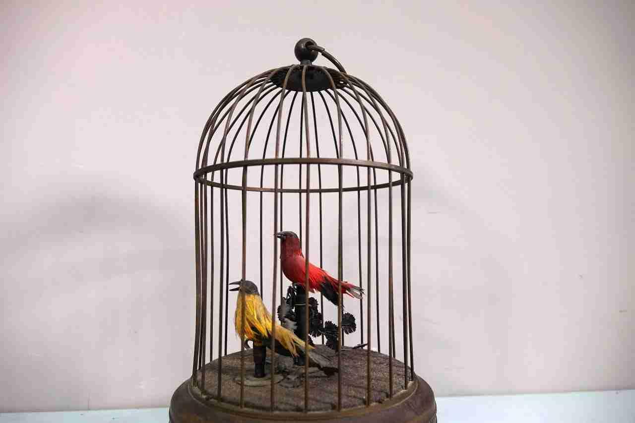 automa  gabbietta con uccelli — ricarica a corda — due voci