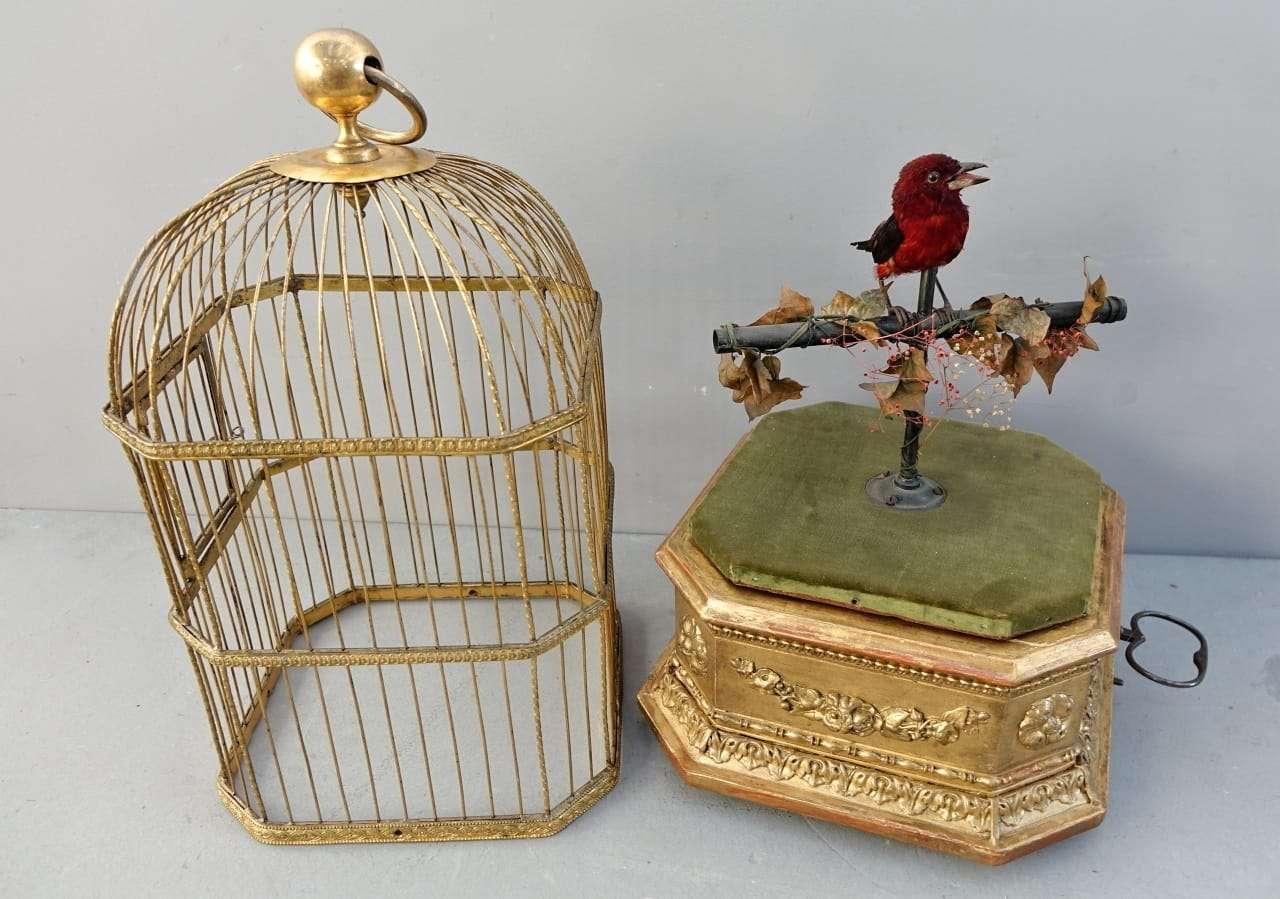 Automa gabbia musicale dorata  Uccelli canterini meccanici